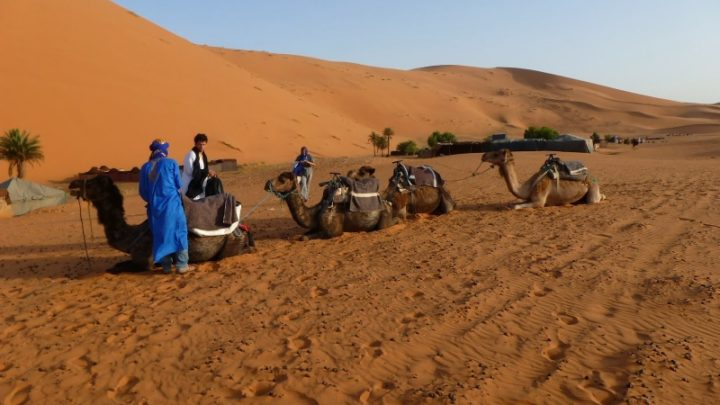 Marrakech to zagora desert tour