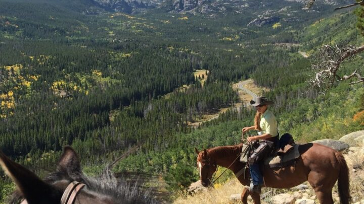 Start your journey in Rocky Mountain National Park with a Denver Tour